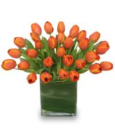 ORANGE OASIS Bouquet of Tulips
