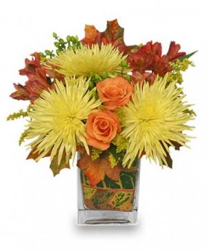 Windy Autumn Day Bouquet in Burlington, CT | THE HARWINTON FLORIST