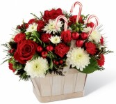 FTD® Candy Cane Lane Arrangement