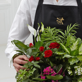 FTD Florist Designed Blooming and Green Plants in  Dish Garden