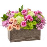 FTD Simple Charm Bouquet - D27