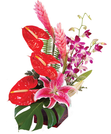 Fuchsia Fantasy Flower Arrangement