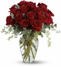 Full Heart - 16 Premium Red Roses  T255-3  Rose Arrangement