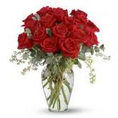 Full Heart - 16 Premium Red Roses T255-3