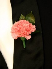 FULL SIZE PINK CARNATION