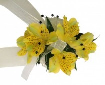 Sunny Side   C58-12 Corsage