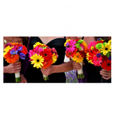 Fun Gerber Daisy Bouquet!  Pick your Color(s)!