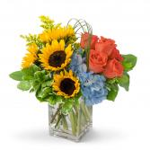 Fun in the Sun Arrangement in Fort Smith, Arkansas | EXPRESSIONS FLOWERS, LLC