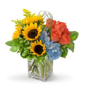 Fun in the Sun Arrangement in Vinton, VA | CREATIVE OCCASIONS EVENTS, FLOWERS & GIFTS