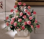 SYMPATHY ARRANGEMENT  FOR THE HOME OR SERVICE