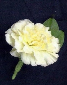 FUNERAL BOUTONNIERE/COURSAGE $7.99 In Memorial Dedication/colors AVL