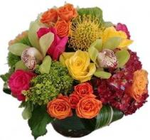 Fuschia Fall Cut Floral Arrangement