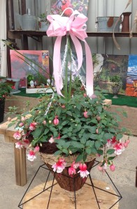 Fairy Tale Fuschia Hanging Basket