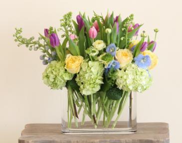 Hollands Surprise Bouquet