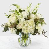 Gala  Arrangement Sympathy Everyday,Floral, Anniversary