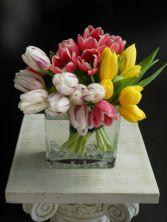 Gangs of Tulips EN-21