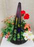 Garden Basket  Assorted Outdoor Plants