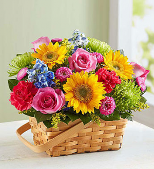 Garden Basket Basket in Sunrise, FL | FLORIST24HRS.COM