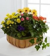 Garden Basket Funeral Flowers