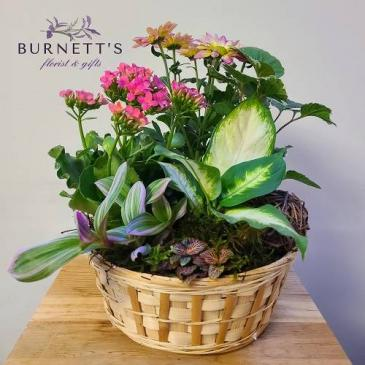 garden basket Planter