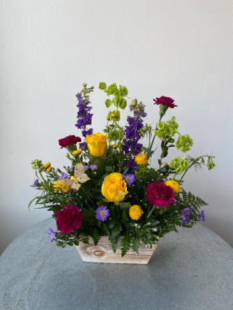 Garden Box Galore