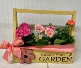 Garden Geranium Wooden Planter