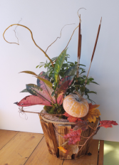 Garden Harvest Plant Basket