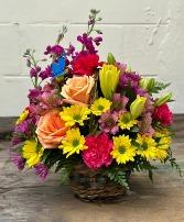 Garden of Butterflies in a basket