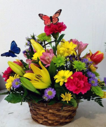 Garden of Butterflies in a basket