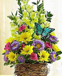 Touch of Spring! Bird Basket Fresh Arrangement