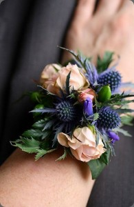 Garden Style Wrist Corsage  with blush spray Roses and Thistle