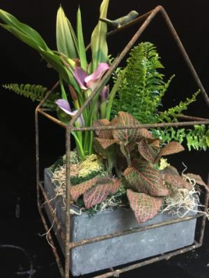 Garden Theory  in New Canaan, CT | BON FLEUR