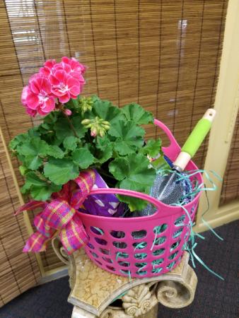 Gardener's Geranium Gift