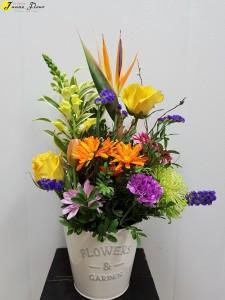 General-Flowers & Garden