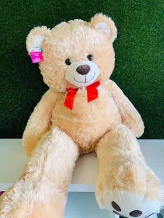 Gentle Teddy bear