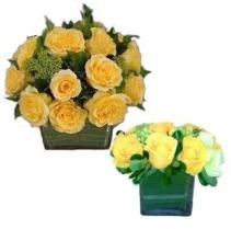 Pocketful of Sunshine Cut Flowers