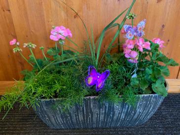 Geranium Planter