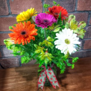 Gerber Craze! Spring Mix of Asst Gerber Daisy Blooms