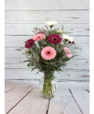 Gerber Daisy Arrangement