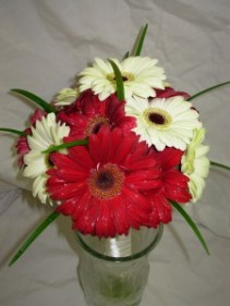 Gerber Daisy Bouquet Price Range: $55 - $96