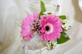 Gerber Daisy Corsage Available in many colors