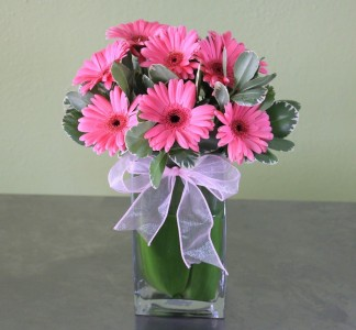 GERBERA DAISY DELIGHT VALENTINE COLORED GERBERAS CAN VARY BASED ON AVAILABILITY
