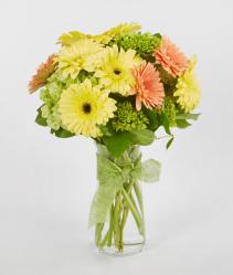 Gerber Floral Vase  Bouquet