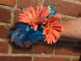 Gerber Time Prom Corsage