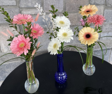 Gerbera Brights Bud Vase