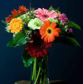 Gerbera & Carnation Vase Arrangement