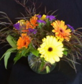 Gerbera Daisy Bowl Arrangement