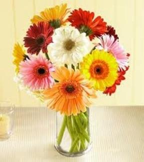 Gerbera Daisy Deluxe Gerbera Daisy Vase in Longview, WA | Banda's Bouquets