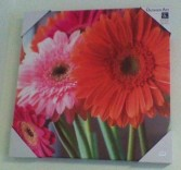 Gerbera Daisy Outdoor Wall Art