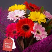 Gerbera Daisy Surprise Bouquet Wrapped
